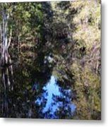 Reflections At Camps Creek  Metal Print