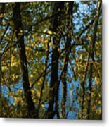 Reflections Fall Metal Print