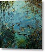 Reflections IIi Metal Print