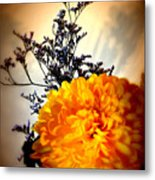Reflections In Orange Metal Print