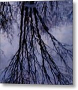 Reflections In Pond Metal Print