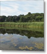 Reflections In The Marsh Metal Print