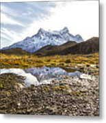 Reflections In The Pond Metal Print