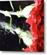 Reflections Of A Carnation Metal Print