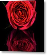 Reflections Of A Red Rose Metal Print