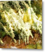 Reflections Of A Snow Metal Print