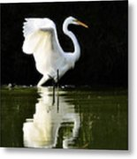 Reflections Of An Angel  Metal Print