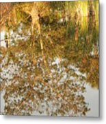Reflections Of Old Miss Metal Print