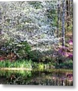 Reflections Of Spring Metal Print