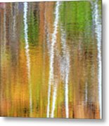 Reflections Of The Canadian Fall Metal Print