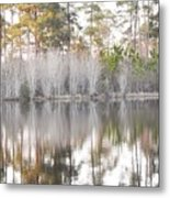 Reflections Of The South Metal Print