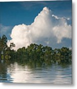 Reflections Of Trees And Clouds Metal Print