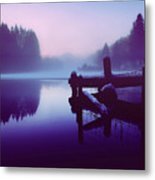 Reflections Of Winter Metal Print