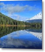 Reflections On Trillium Metal Print