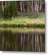 reflections RIV M 2 Metal Print