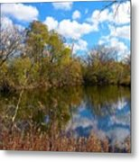 Reflective Cloudy Palatine, Il,  Library Pond Metal Print