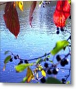 Refreshing View Metal Print