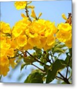 Refreshing Yellows Metal Print