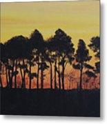 Refuge Sundown Metal Print