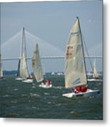 Regatta In Charleston Harbor Metal Print