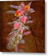 Regrowth Metal Print