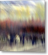 Regularity Metal Print