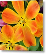 Relaxed Tulips Metal Print