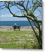 Relaxing By The Shore Metal Print