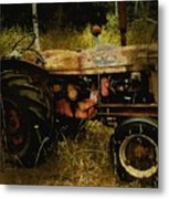 Relic In The Field Metal Print