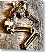 Remains ... Metal Print