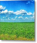 Remains Of The Wind Metal Print