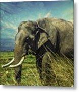 Remember Elephant Metal Print