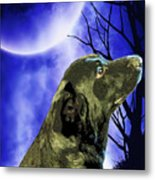 Remembrance Of Apollo Metal Print by Savannah Fonner