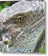 Reptilian Metal Print