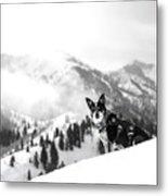 Rescue Dog Metal Print