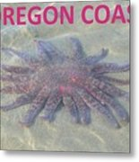Rescued Sunflower Starfish Metal Print
