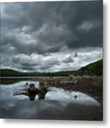 Reservoir Logs Metal Print