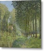 Rest Along The Stream - Edge Of The Wood Metal Print
