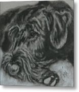 Restful Thoughts Metal Print