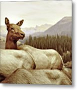 Resting Deer Metal Print