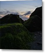 Resting With The Moss Metal Print by Stephanie  Varner