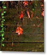 Retaining Wall In Autumn Metal Print