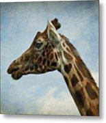 Reticulated Giraffe Head Metal Print