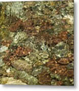 Reticulated Reflection Metal Print