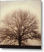 Retro Foggy Tree Metal Print