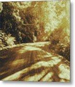 Retro Rainforest Road Metal Print