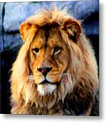 Return Of The King Metal Print