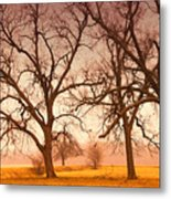 Revelation Metal Print by Iris Greenwell