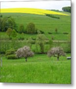 Rhineland-palatinate Summer Meadow With Cherry Trees Metal Print