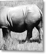 Rhino In The Grasses Metal Print